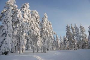 dsc_finnland